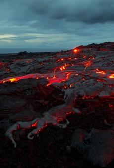 Shore lava_D69D9953
